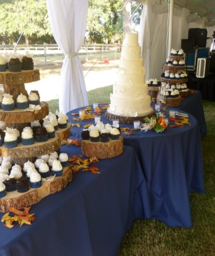Outdoor Wedding with Cupcakes and Tiered Cake